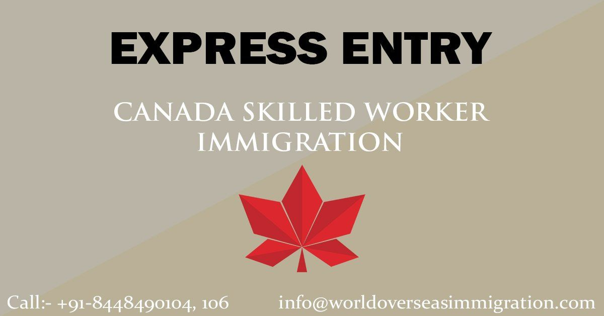 """World Overseas Immigration Consultancy Pvt Ltd on Twitter: """"If you're a skilled worker, you can apply for Express Entry program? Find out if you're eligible: https://t.co/ji6jmCQZ4K#worldoverseasimmigration #worldoverseasimmigrationconsultancy #likes #likes4likes #follow #follow4follow #followforfollow #f4f #fforf… https://t.co/cSF6RwhE7m"""""""