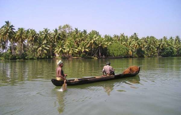 Enjoy Beauty of Kerala With Kerala Tour Packages