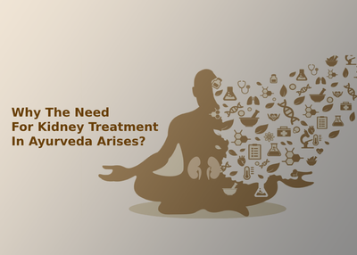Why The Need For Kidney Treatment In Ayurveda Arises?