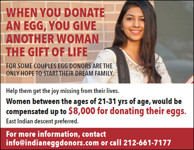 Things you must know about an egg donor