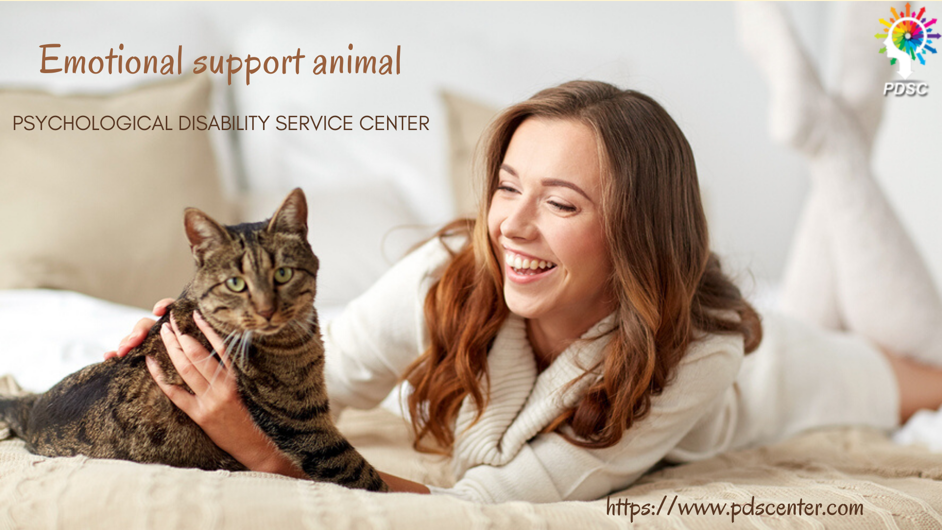 Why an emotional support animal is your best companion? - PDSC