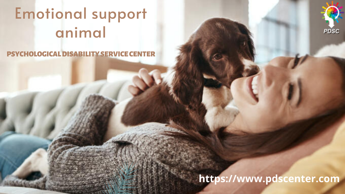 Emotional support animals contribution in a happy & healthy life | ESA letter | PDSC - PDSC