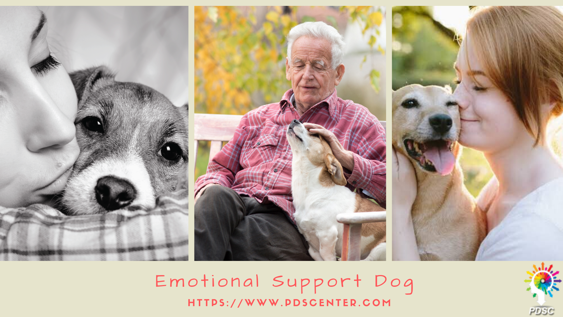 Responsibility of service dog and emotional support dog | esa letter | PDSC