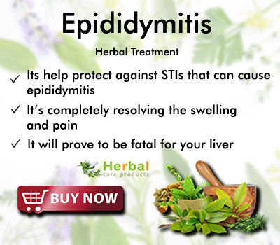 Natural Remedies for Epididymitis and Herbs Stop Further Complications