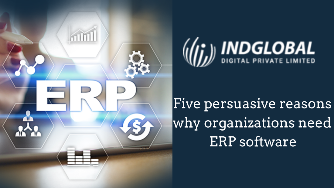 Five persuasive reasons why organizations need ERP software