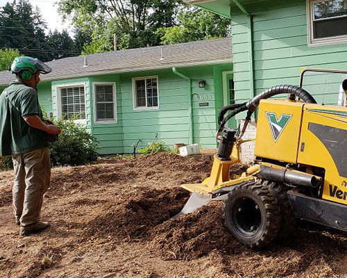 Tree Removal Portland Oregon | Tree Trimming - Evergreen Tree Service