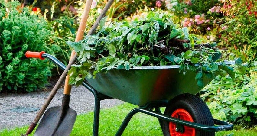 gardening franchises