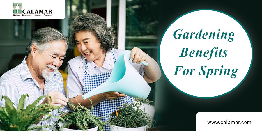 Gardening Benefits For Spring