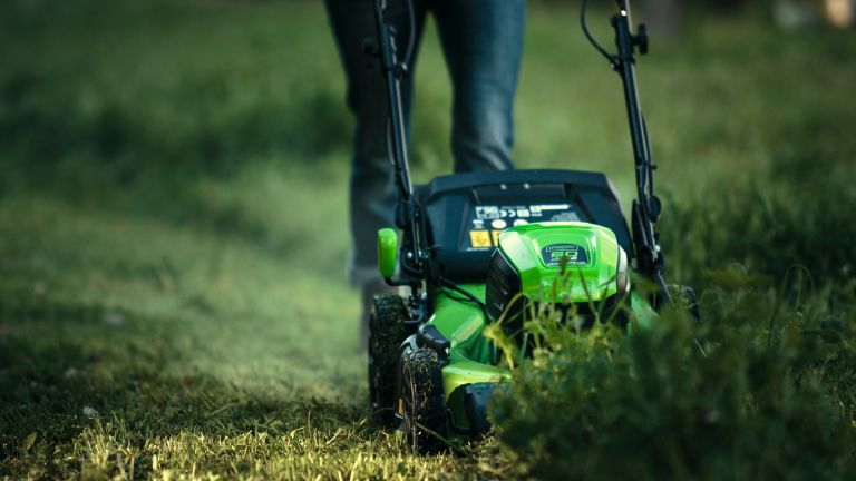 Top 5 electric lawn mower