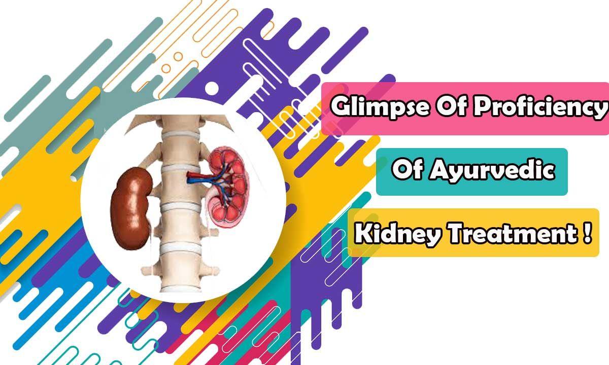 Glimpse Of Proficiency Of Ayurvedic Kidney Treatment