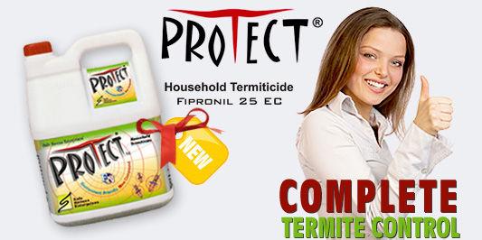 Termite Control Lahore