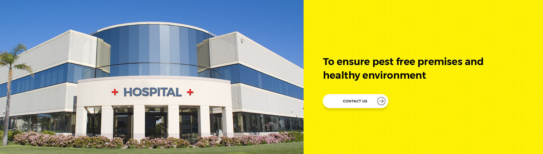 Best Pest Control Management Services for Hospitals and Clinics