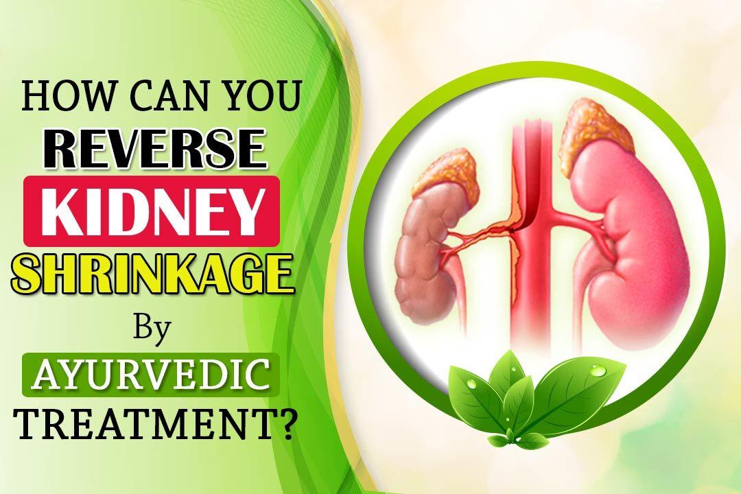 Reverse Kidney Shrinkage By Ayurvedic Treatment