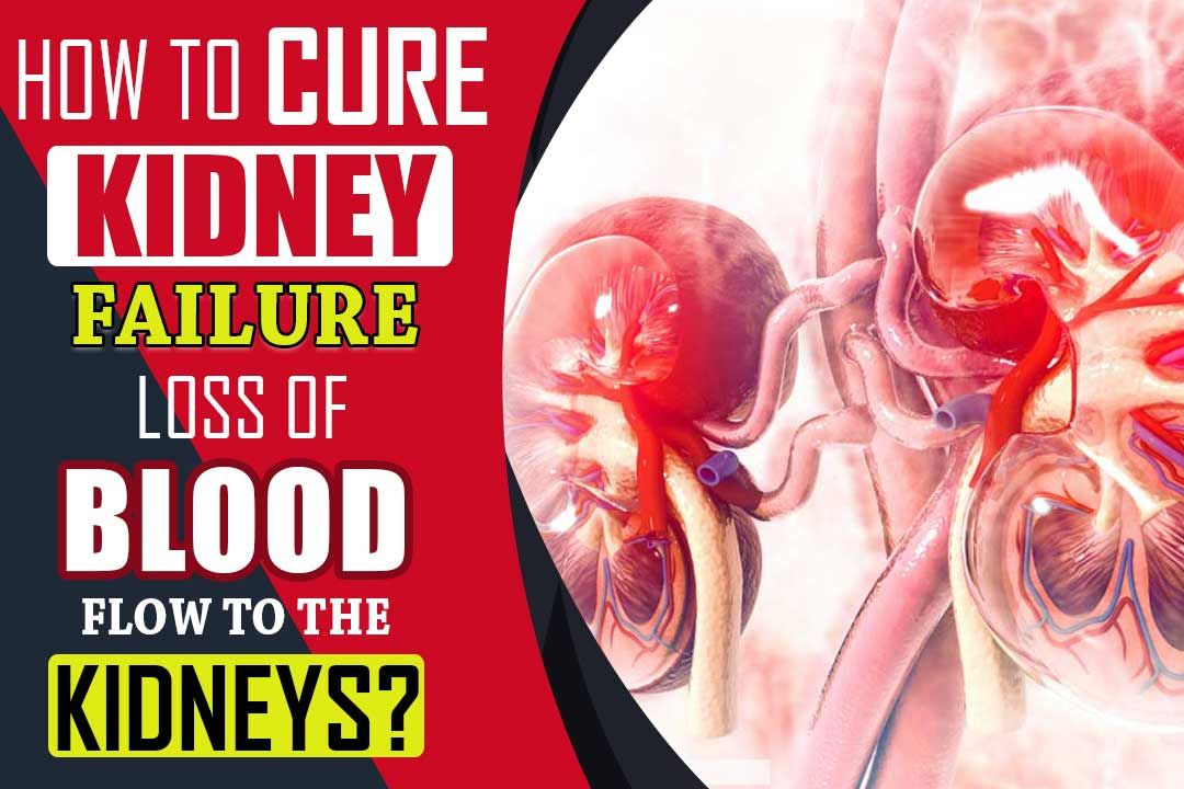 How To Cure Kidney Failure Caused By Loss Of Blood Flow To The Kidneys?