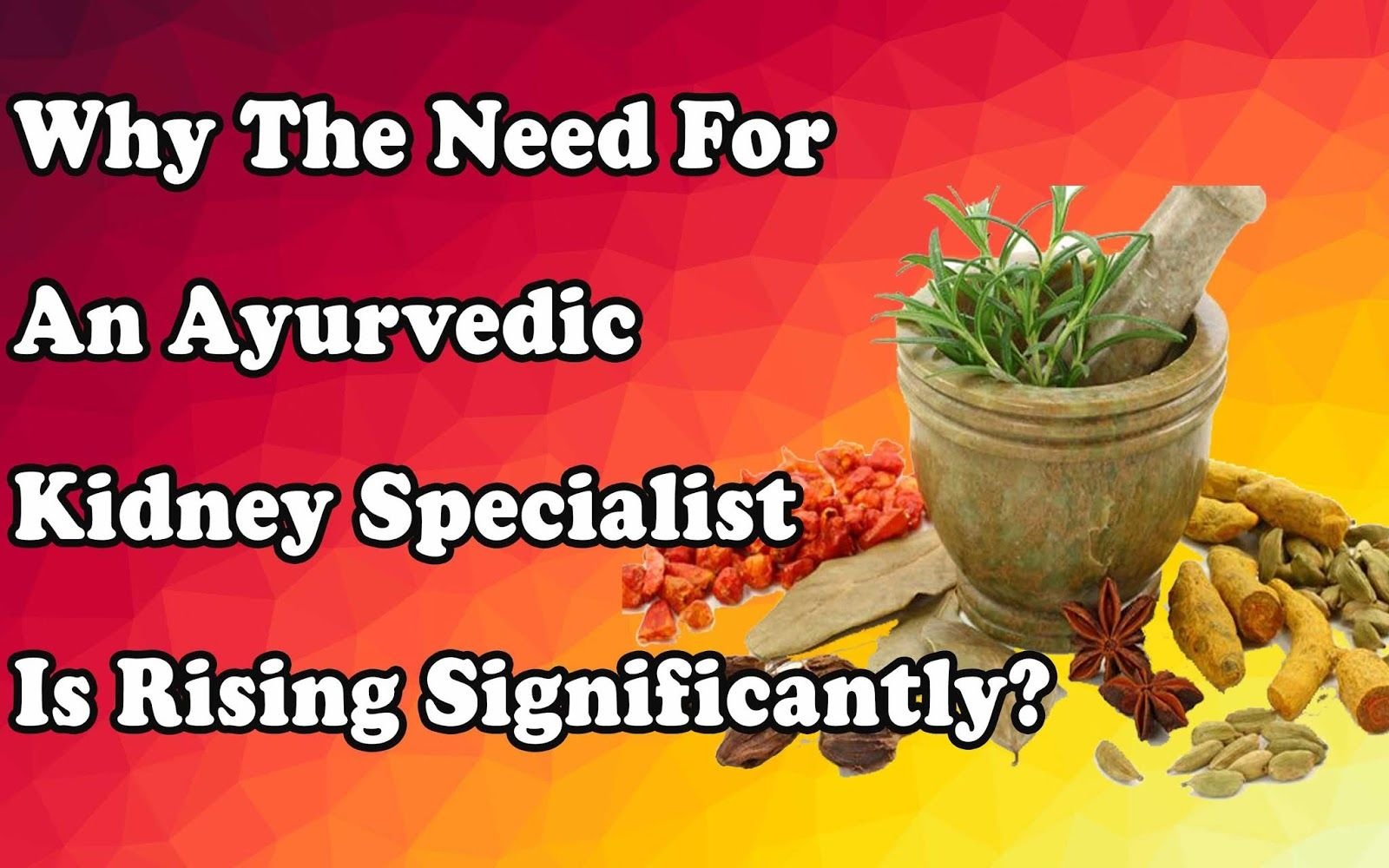 Why the Need For an Ayurvedic Kidney Specialist is Rising Significantly?