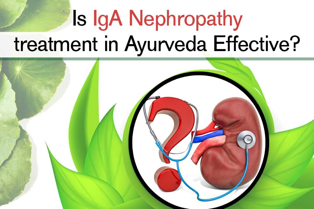 Is IgA Nephropathy treatment in Ayurveda Effective?