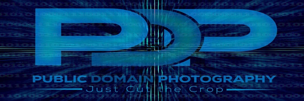 Get public domain images for free