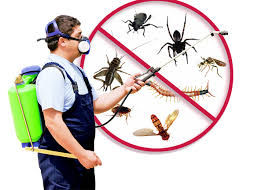 How An Integrated Pest Management Benefit Your Business?