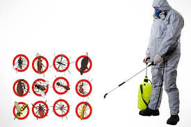 Advanced Pest Control Services in India