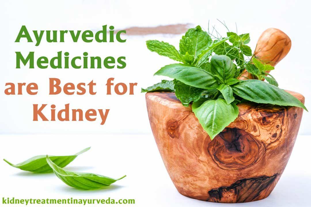 Best Kidney Failure Ayurvedic Treatment