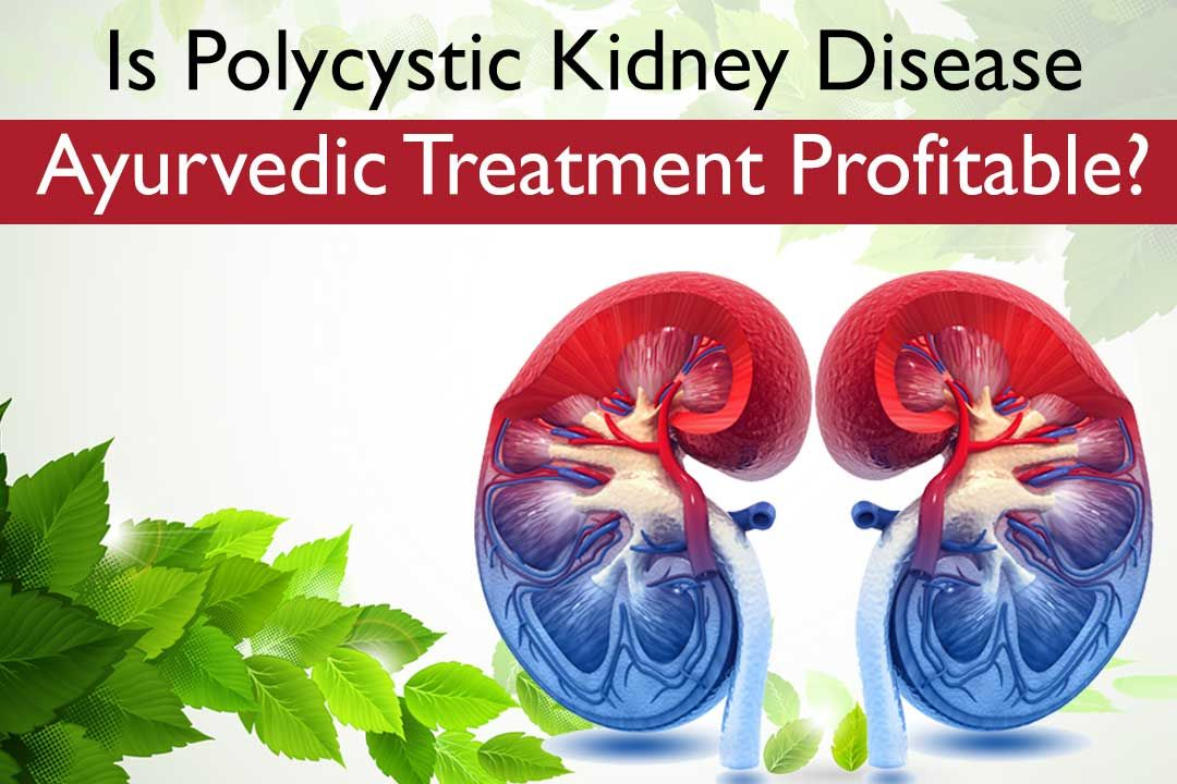 Is Polycystic Kidney Disease Ayurvedic Treatment Profitable?