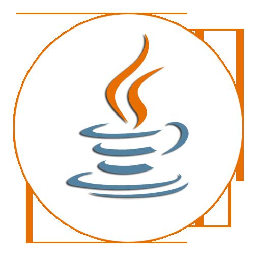expert Java developer in 6 months