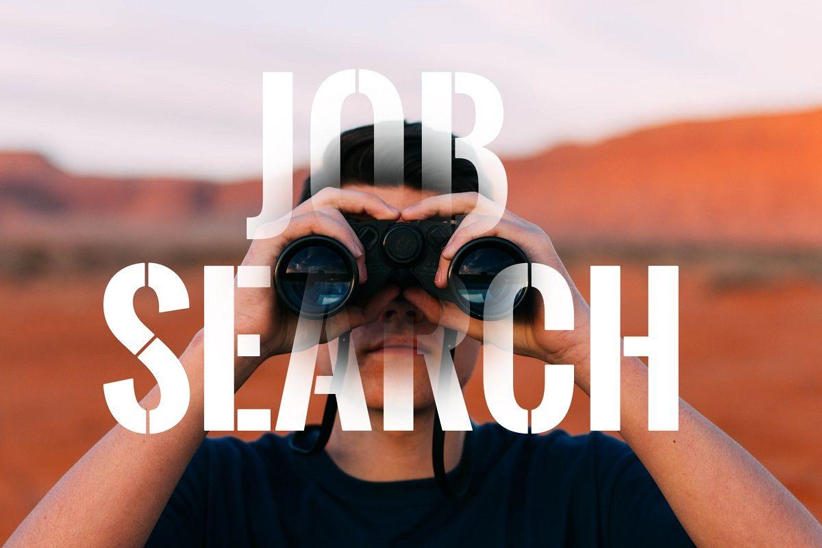 Job Search In Jaipur