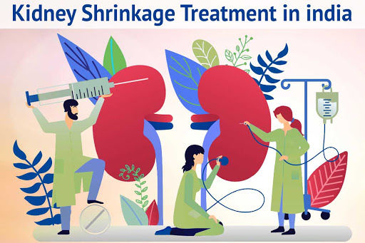kidney shrinkage treatment in India