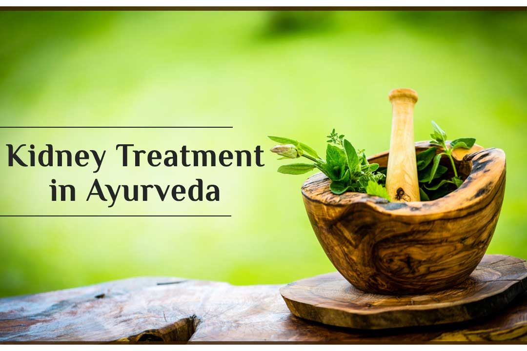 The best kidney treatment in Ayurveda by Dr. Puneet Dhawan