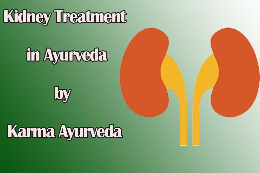 Kidney Treatment in Ayurveda by Karma Ayurveda