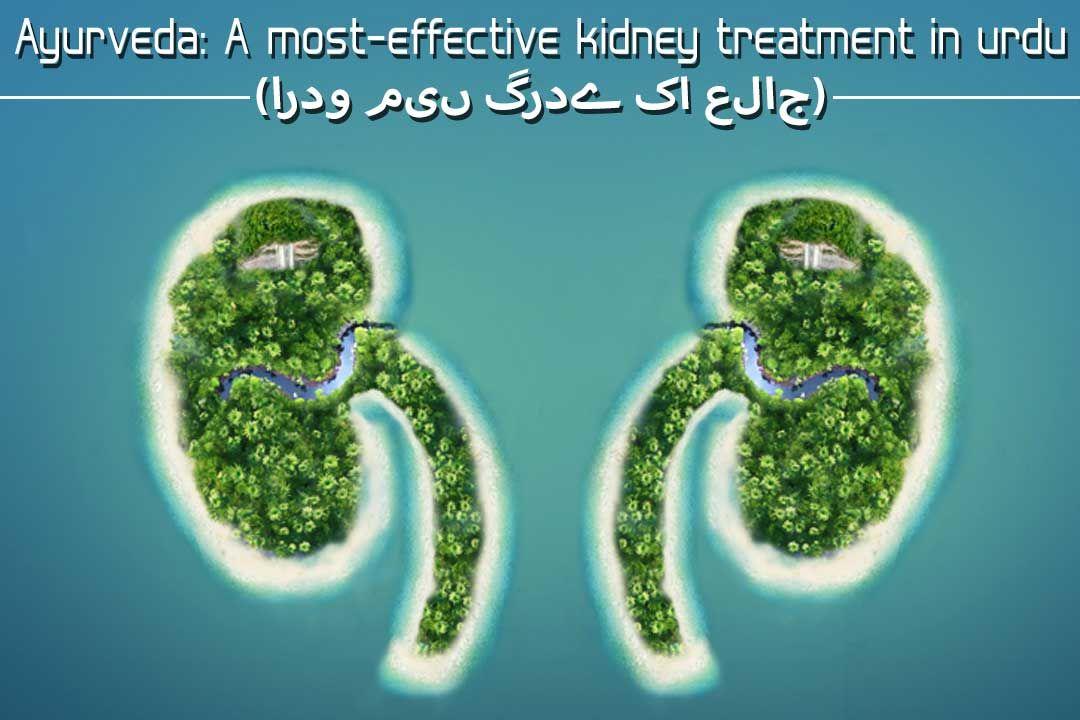 Ayurveda: A most-effective kidney treatment in Urdu