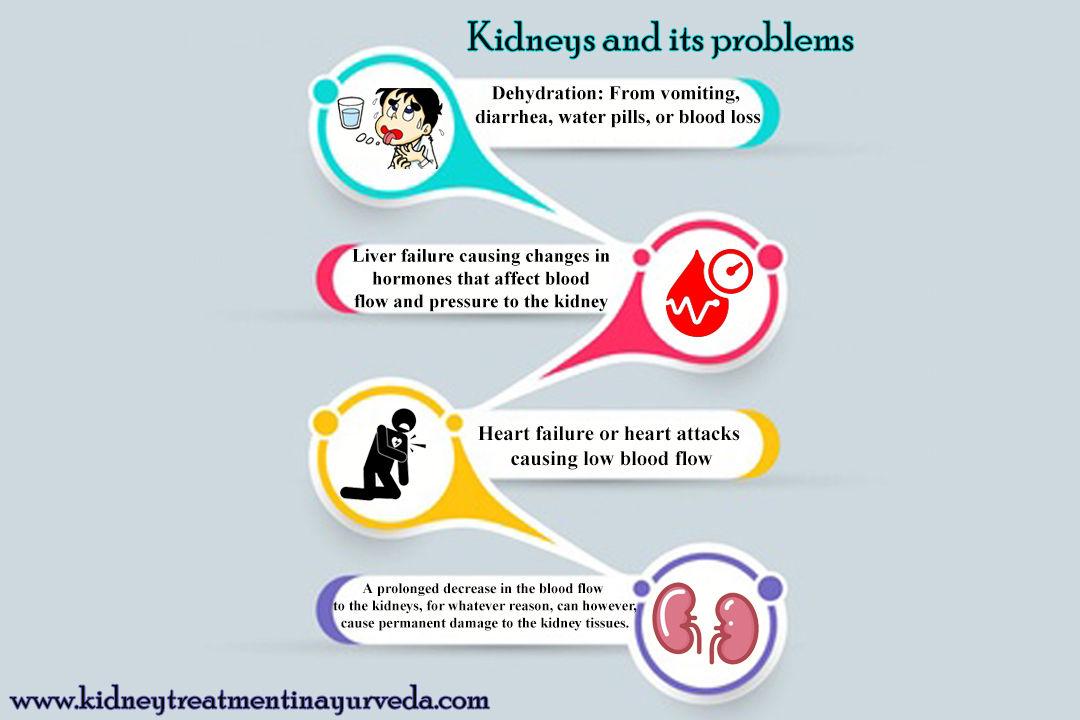 Kidneys and its Problems - Dr. Punnet Dhawan