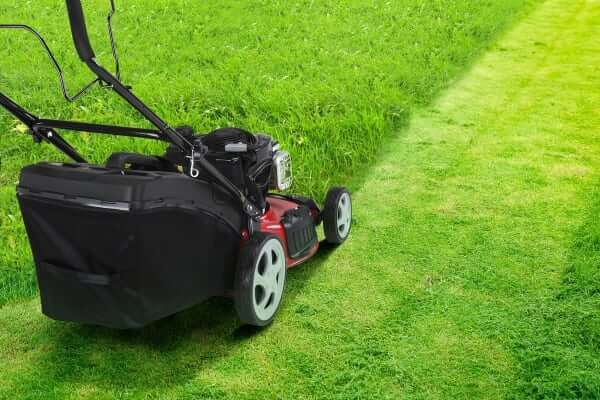 How to choose a right cordless lawn mower