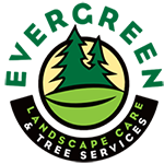 Stump Grinding | Tree Removal | Tree Trimming Service Portland Oregon