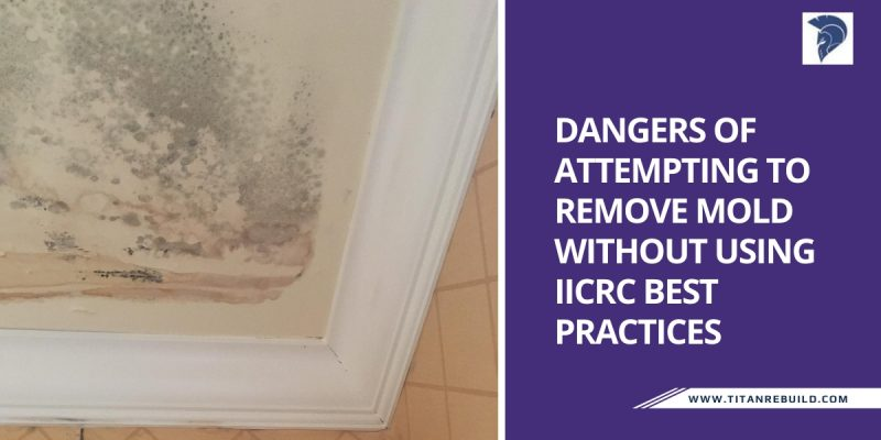 Dangers of Attempting to Remove Mold Without Using IICRC Best Practices - Titan Restoration Construction - West Palm Beach