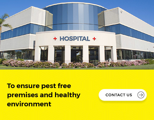 How to control pests in hospital in India