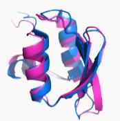 Peptide N-Terminal Modification - Creative Peptides