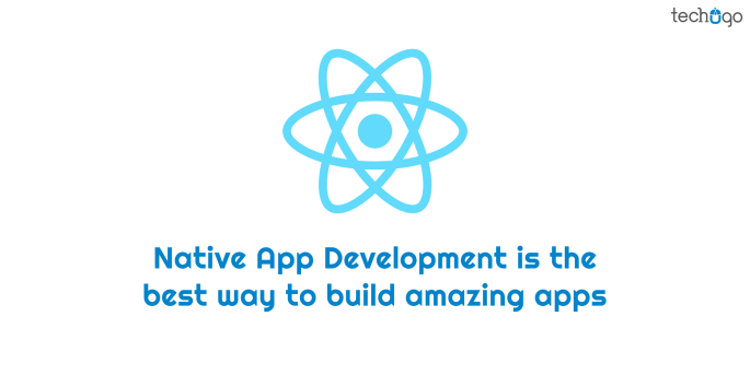 Native App Development Is The Best Way To Build Amazing Apps