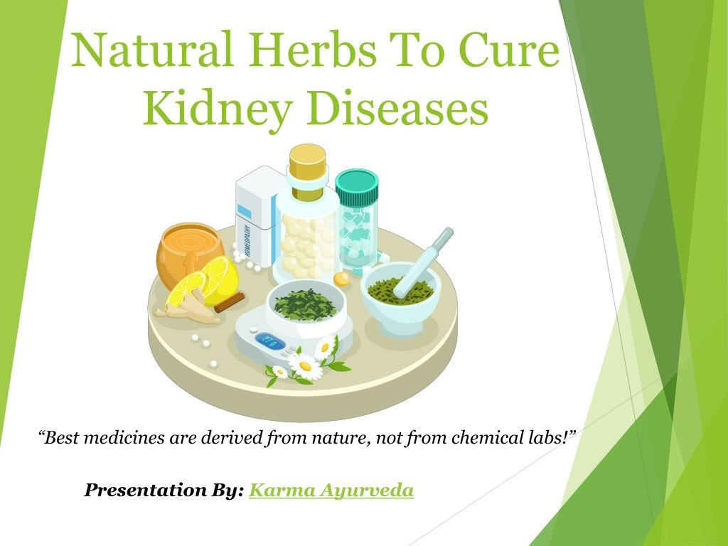 Natural Herbs To Cure Kidney Diseases