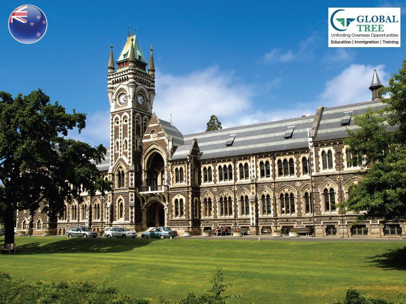 Study in New Zealand Education Consultants – Global Tree