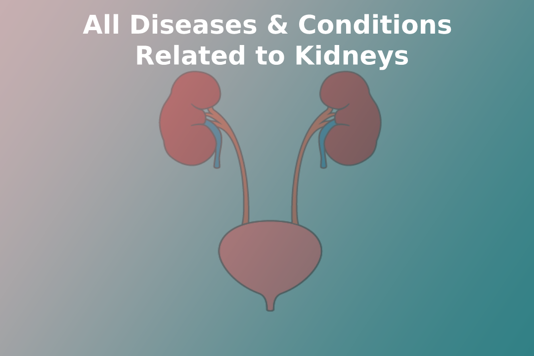 All diseases & conditions & Related to kidneys