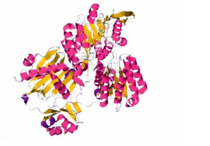 ATP Citrate Lyase Inhibitors, Agonists and Modulators - BOC Sciences
