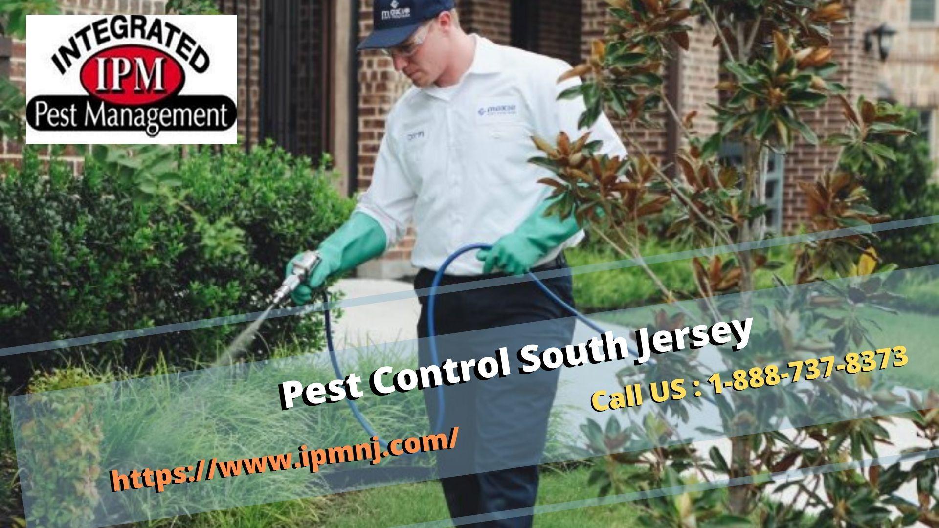 Pest Control South Jersey — imgbb.com