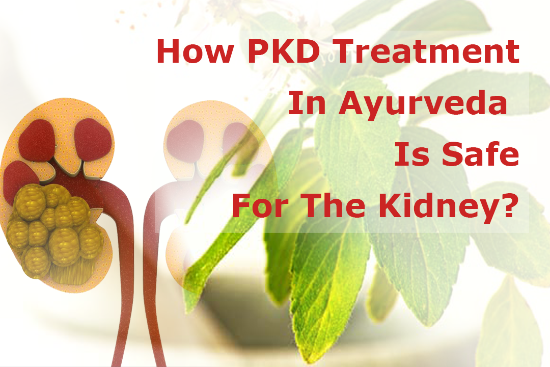 How PKD Treatment In Ayurveda Is Safe For The Kidney?