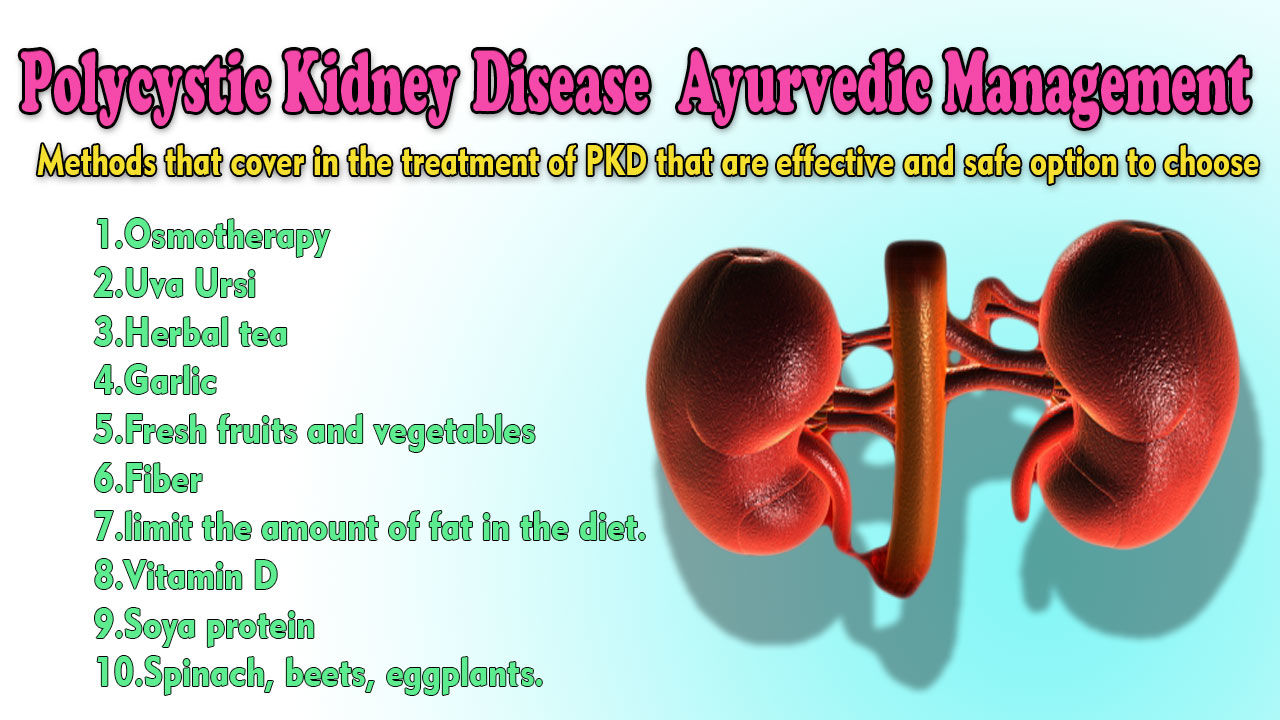 Polycystic Kidney Disease Treatment in Ayurveda