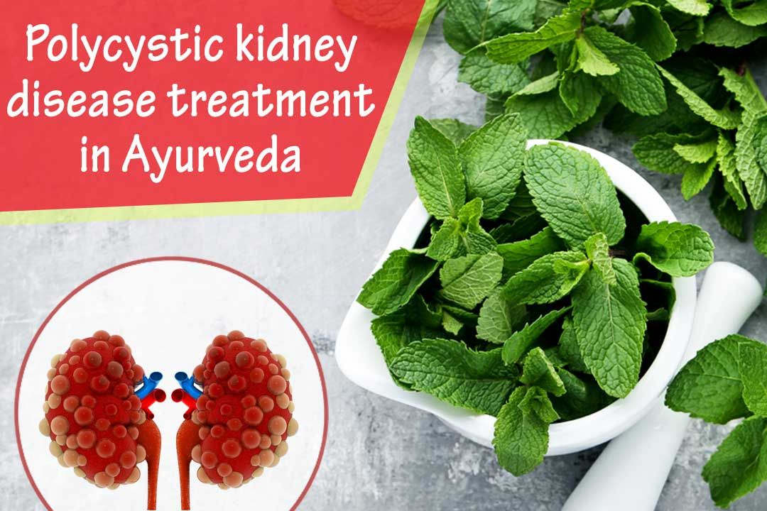 What Is Ayurvedic Polycystic Kidney Disease?