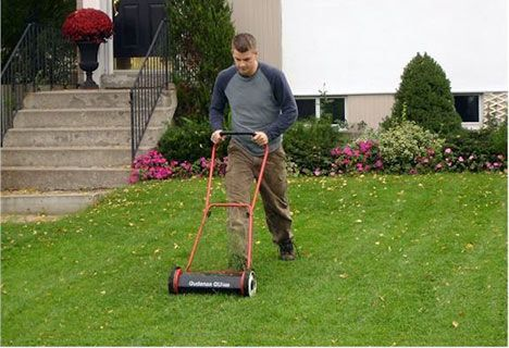 A Quick Guide To Summer Lawn Care