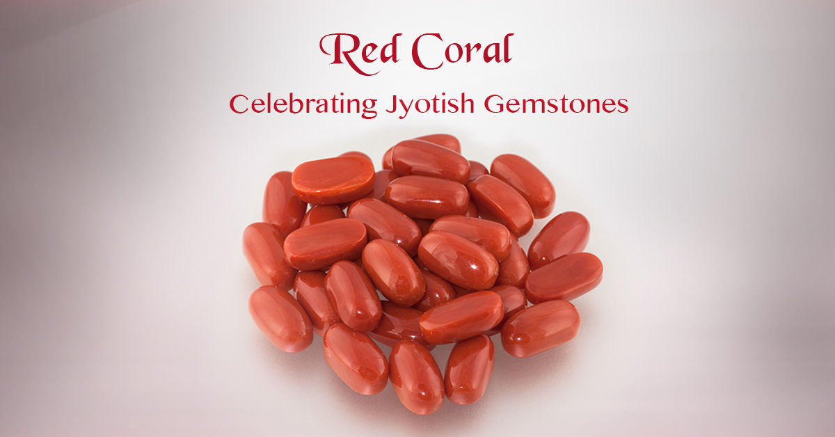 Red Coral Stone Benefits | Red Coral Benefits | Moonga Stone