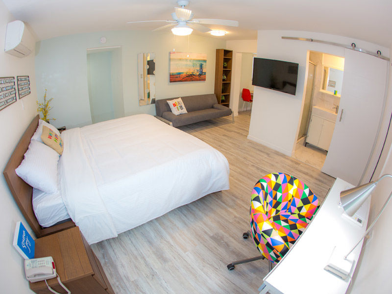 Enjoy your holidays, vacations with Affordable hotels in St Petersburg FL