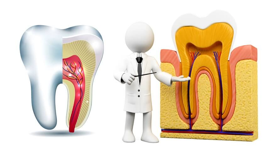 Root Canal Treatment in Mumbai - Cost of root canal Smile Store